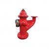 public://uploads/media/super_centurion_250_monitor_hydrant_clr_img2.png